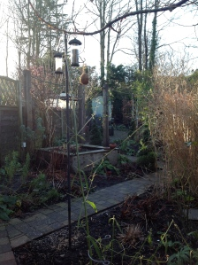 Garden, January 1 2013