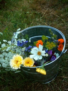 A bucket of #britishflowers cut from my allotment